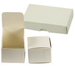 Micro-Tec B40 white cardboard box, 100x60x20mm