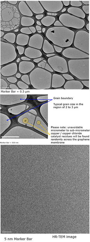 EM-Tec graphene TEM supports on Lacey carbon